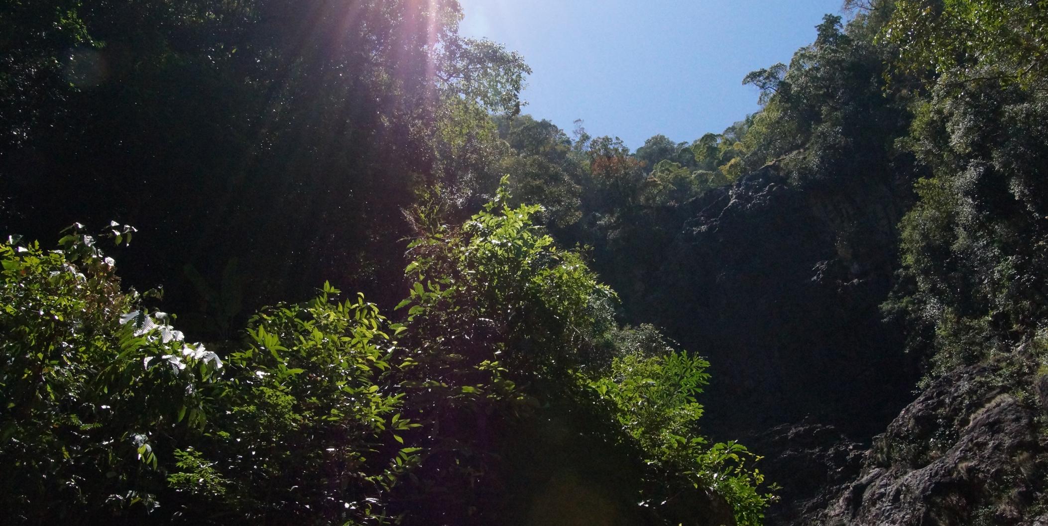 Udsigt i junglen ved Tamarun Waterfall, Langkawi. Foto: Lizandra Pultz